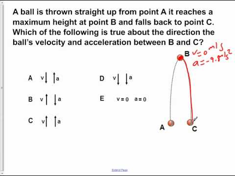 AP Physics B Kinematics Presentation #24