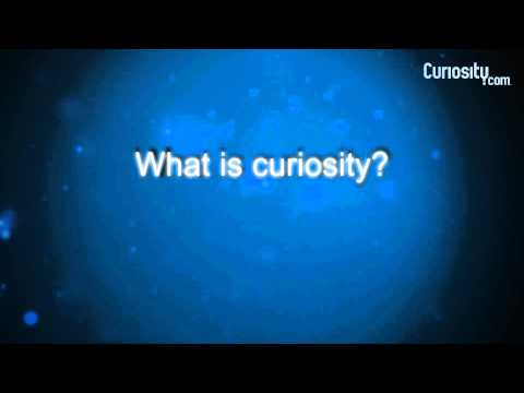 David Schwarz: On Curiosity