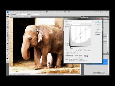 Photoshop: A first look at Curves | lynda.com