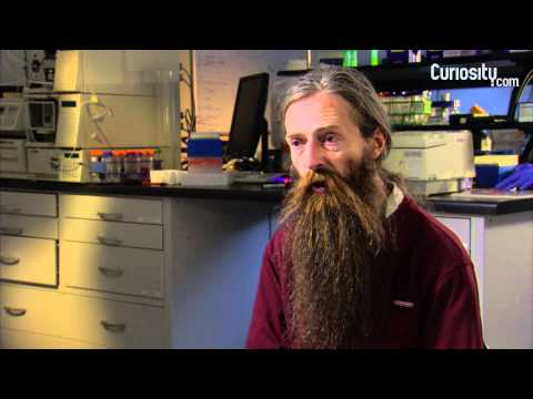 Aubrey de Grey: Inflection Point