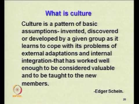 Mod-02 Lec-17 Impact of environment and cultural variables on organization structure & style(contd1)