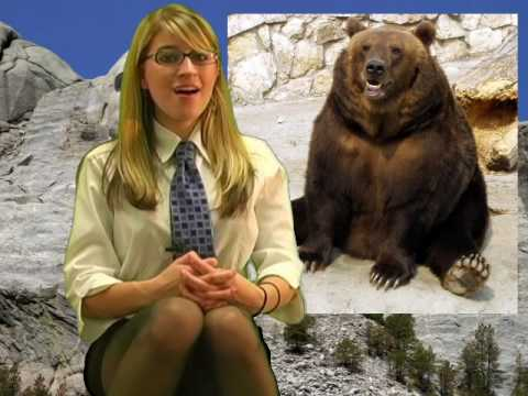 Deadliest USA Animals, Top Dangerous Animals, Hot Facts Girl