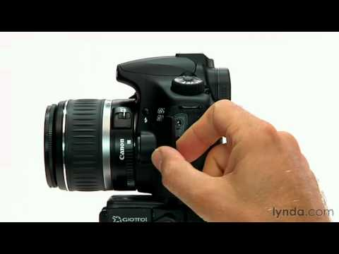 An introduction to the Canon 60D camera | lynda.com overview