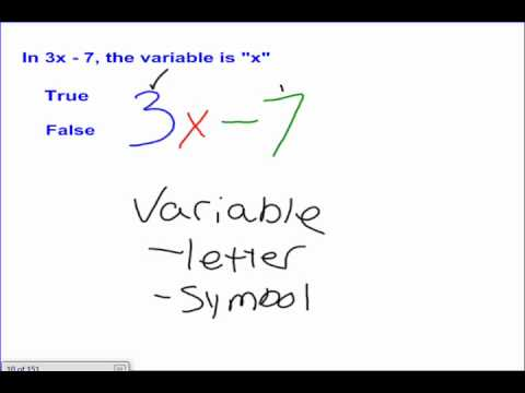 Variables and Expressions #1
