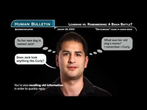 Science Bulletins: Learning vs. Remembering: A Brain Battle ?