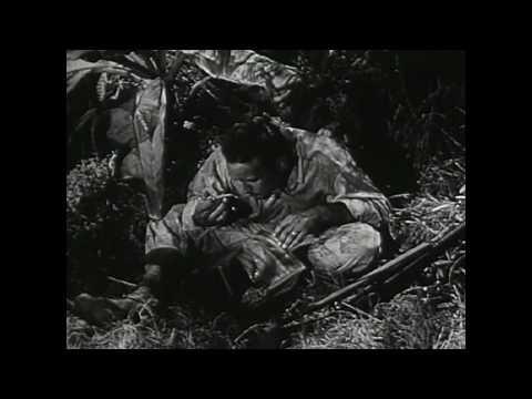 It's Everybody's War (1942)
