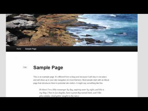 How To Create or Edit Wordpress Pages, Posts and Widgets