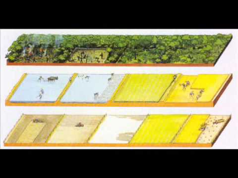 Higher Course Farming Systems.wmv