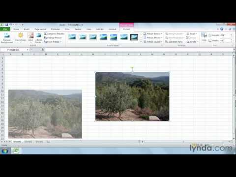 Excel tutorial: How to edit pictures | lynda.com tutorial