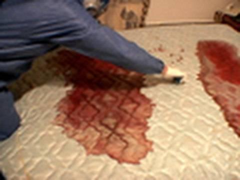 Real Life CSI:  Crime Scene Cleaners