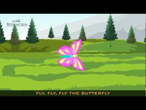 Edewcate english rhymes - Fly, fly, fly the butterfly