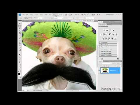 Photoshop: The new tabbed window interface | lynda.com