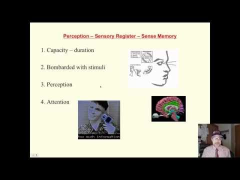 Saylor PSYCH303: Cognitive Psychology Information Processing