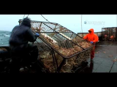 Deadliest Catch: Second Chance