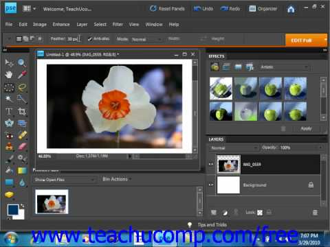 Photoshop Elements 9.0 Tutorial The Marquee Tool Adobe Training Lesson 8.3