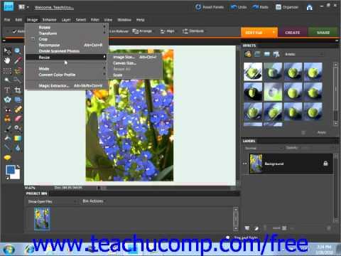 Photoshop Elements 9.0 Tutorial Image Size & Resolution Settings Adobe Training Lesson 4.3