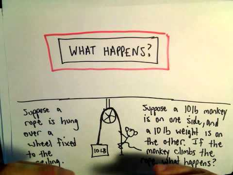 Puzzle: What Happens? The Monkey and the Weight