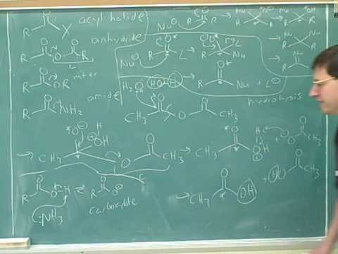 Carboxylic acid derivatives (5)