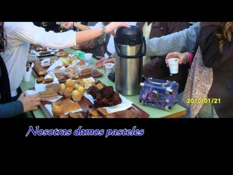 Irregular Spanish Verbs - Present Tense - Dar