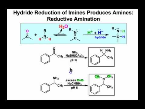Reductive Amination: Mechanism & Examples
