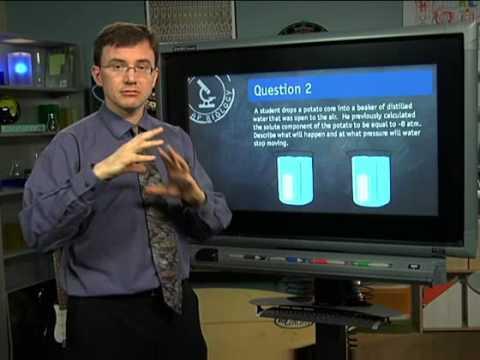 Complete AP Biology Prep Online