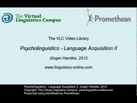 Psycholinguistics - Language Acquisition II