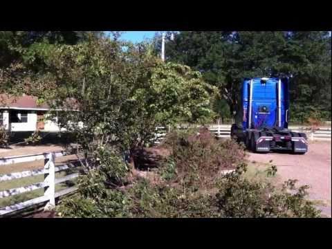 fence repair (1)