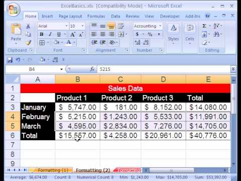 Excel Basics #12: Stylistic & Number Formatting