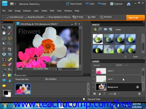 Photoshop Elements 9.0 Tutorial Using Layers Training Lesson 10.1