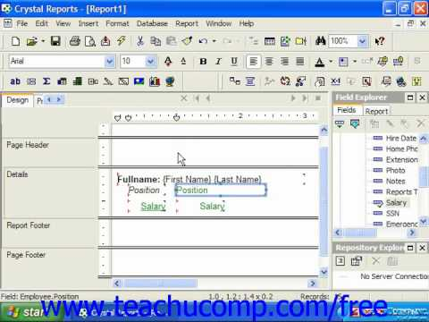 Crystal Reports Tutorial Format Painter Business Objects Training Lesson 5.5