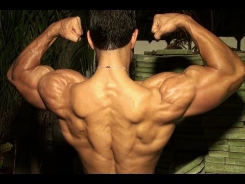 Gaspari Nutrition: Muscle Building Supplements