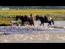 BBC: Saira Khan's Pakistan - Wild East