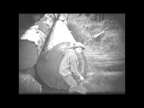 The World: Library of Congress - Valley of the Giants(1919)
