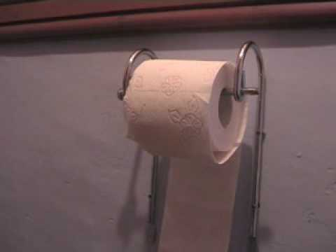 "Video Request ""how to change the toilet roll"""