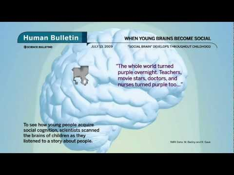 Science Bulletins: When Young Brains Become Social