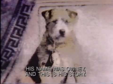 Story of Owney, Mascot of the Railway Mail Service