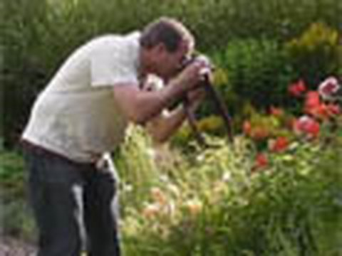 How to do amazing garden photography in 15 minutes - Week 63
