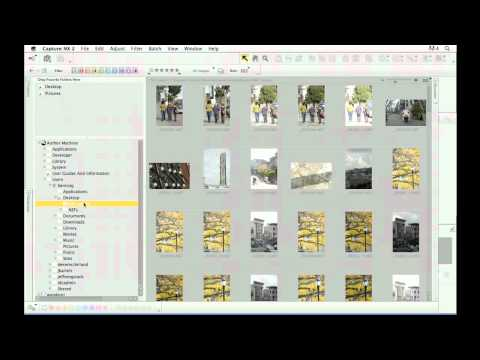 Nikon Capture NX 2: Browser view navigation features | lynda.com tutorial