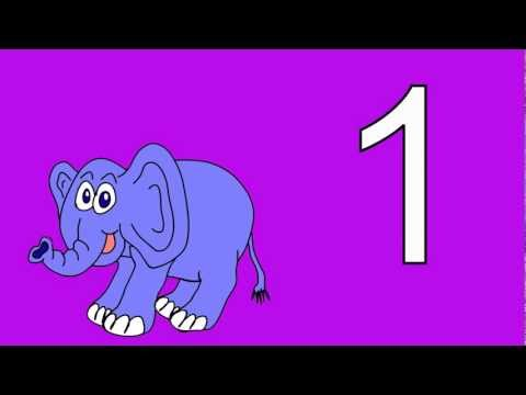 Animal Numbers 1 to 5: Count the Animal Numbers 1 to 5 Stories for Children Books Edu Early Learning