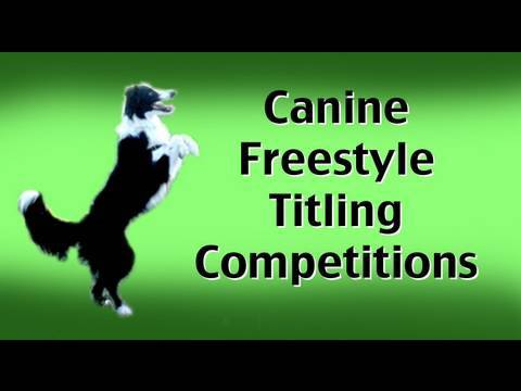 Canine Freestyle Titling Competitions
