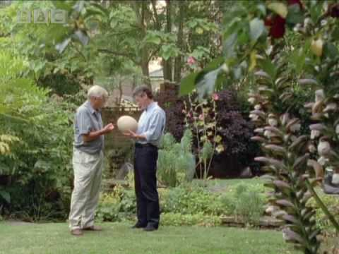 Changing the face of the BBC - Sir David Attenborough - Life on Air