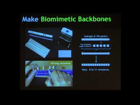 "John Long, ""Darwin's Devices: Evolving Robots to Study Animal Evolution"" at World Maker Faire 2012"