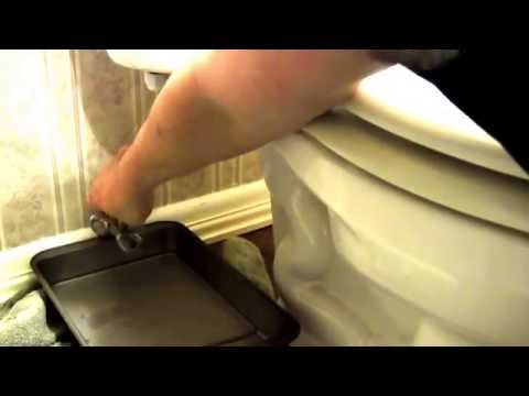 repair/replace a toilet valve.