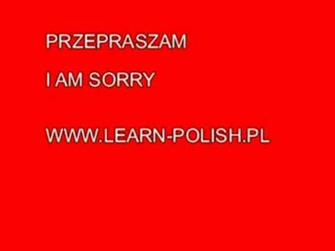 I am sorry in Polish