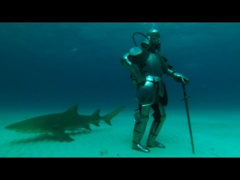 Sharks and Shining Armor | MythBusters Jawsome Shark Special -- Shark Week 2012