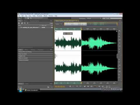 Soundbooth: Using the Editor panel and the Zoom navigator | lynda.com