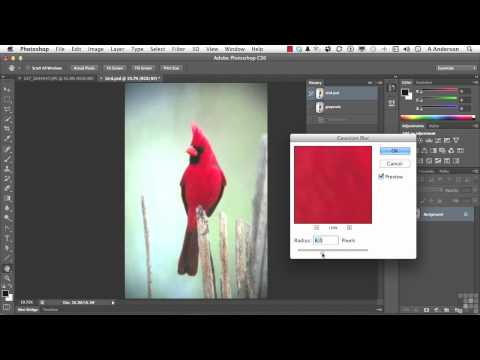 Adobe Photoshop CS6 Tutorial | Using the History Brush and Snapshots | InfiniteSkills