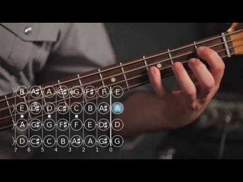 Bass Guitar Lesson: Roots and Fifths Exercises
