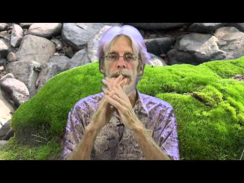 """How to Choose a Counselor, Psychologist or """"Therapist"""", John Breeding"""