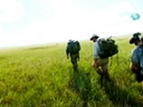 Out of the Wild: Venezuela- Battle of the Bog